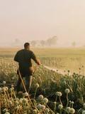 農作物に噴霧